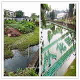 养殖废水治理工程