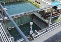 中山某电器永利在线注册有限公司磷化废水处理工程